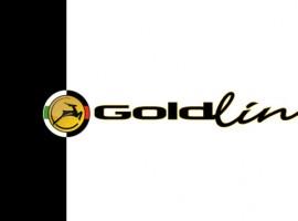 Nieuw: Gazelle Goldline racefietsen in hoog segment