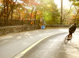 Herfst in Seoul – video