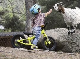 Kinderen zet je zo vroeg mogelijk op 2 wielen – video