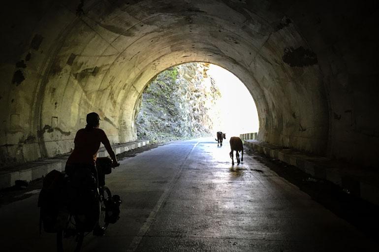 georgie-fietsvakantie4